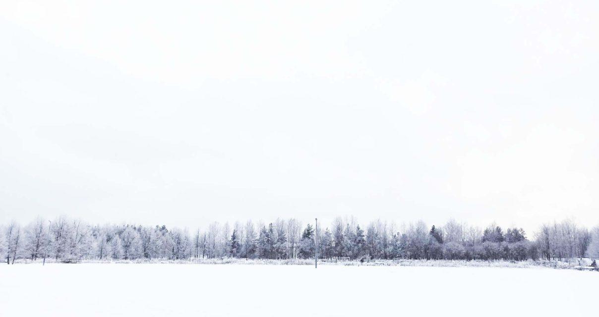 フィンランドのあれこれ 第4回「フィンランド ― お腹空間」